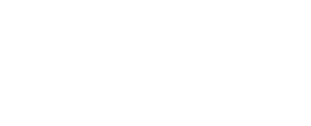 Point Consulting